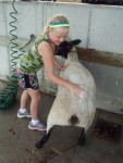 Girl with sheep